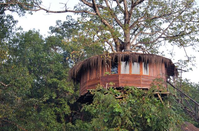 dandeli jungle resort
