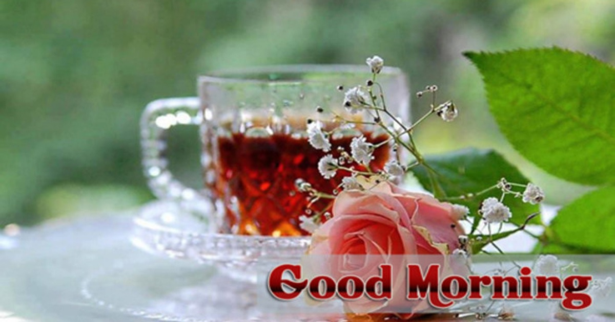 Good Morning Quotes and SMS