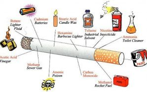 Cigarettes–Harmful effects on the environment
