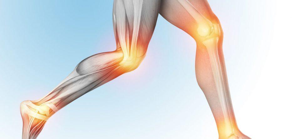 Most Common Orthopedic Implants