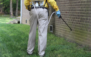 Which Pest Controllers Should You Actually Hire?