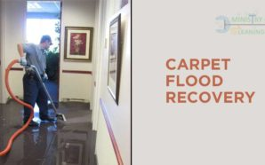 Best Way to Clean Carpet After You've Suffered From Water…